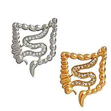 2-Set of <b>Metal</b> Silver and Golden Intestines Anatomy Brooch White ...