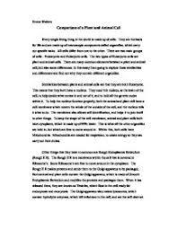 student papers animal testing  homework servicestudent papers animal testing