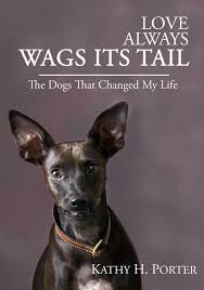 wag the dog essay wag the dog college essays 1200 words studymode