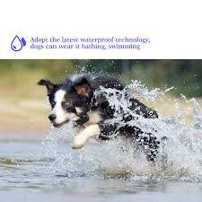 Rechargeable Waterproof Electronic <b>Dog Training</b> Collar Stop ...