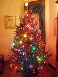 lights photo tree with big christmas lights photo album