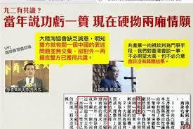 Image result for 九二無共識 一中無各表