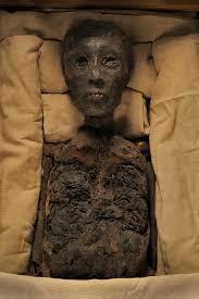 photo album king tut queen nefertiti and one tangled family tree picture of tutankhamun remains