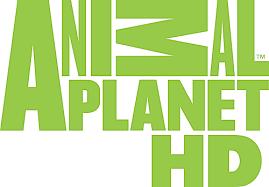 Animal Planet HD Polsat