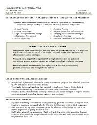 functional resume format examples executive resume template word sample executive resume format