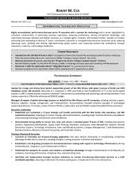 resume samples elite resume writing it resume sample 3 provided by elite resume writing services