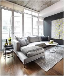 Rugs In Living Rooms Living Room Zebra Rug Modern Area Rugs For Living Amazing
