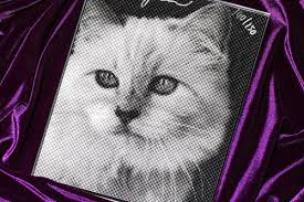 <b>Karl Lagerfeld</b> on Choupette | AnOther