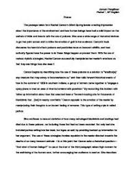 short essay template  an example essay gxart org   cover letter    examples of essay in literature gxart org