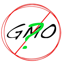 anti gmo essays studies proving gmos are harmful not if science matters