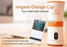 LCD Portable Iorgane <b>Cup Intelligent Water Cup</b> with Reminding ...