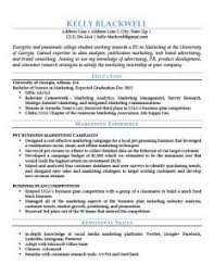 blue entry level resume template resume it template