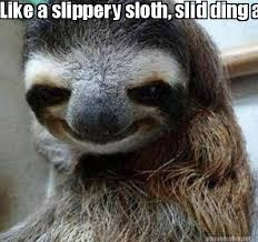 Meme Maker - Like a slippery sloth, slid ding aroouuunnndd Meme Maker! via Relatably.com