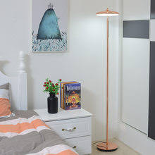 <b>design floor lamp</b>