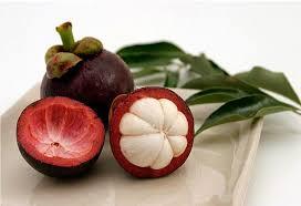 Hasil gambar untuk Benefits of mangosteen fruit