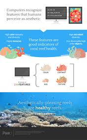 can we measure beauty computational evaluation of coral reef an infographic summarizing