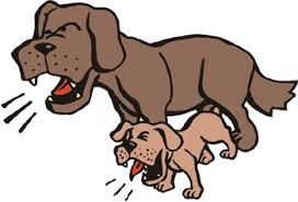 Image result for images of a barking dog