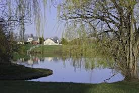 10 tips for maintaining <b>a large</b>, <b>natural</b> pond | Successful Farming