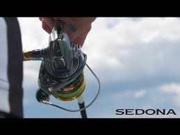 <b>Катушка Shimano Sedona C5000XG</b> FI