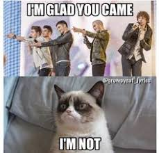 grumpy cat on Pinterest | Meme, Big Bang Theory and Bruno Mars via Relatably.com