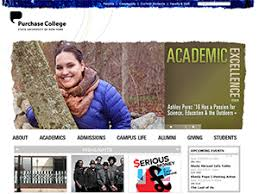 purchase college state university of new york application essays  academic and professional writing for purchase college state university of new york admission essay college application essay academic essay