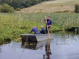 jobs volunteering opportunities the wildlife trust of south pond work