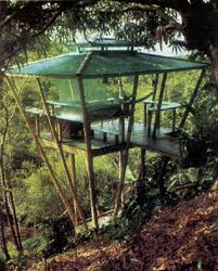 How to Build a Treehouse   DIY   MOTHER EARTH NEWSTreehouse plans come in all shapes and sizes  Before you    re resting in a hammock in your dream treehouse  check out these useful building tips