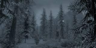 Bildresultat för forest gif
