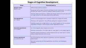 cognitive and language development essay websitereports web cognitive and language development essay