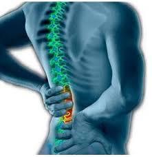 Image result for sakit belakang