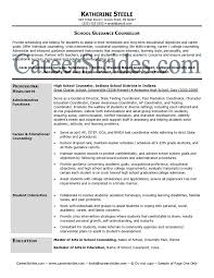examples for youth counselor resume  seangarrette coexamples for youth
