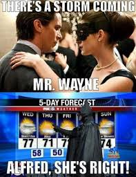 Hollywood Memes: Catwoman Warning... • The Leek via Relatably.com