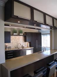 Contemporary Kitchen Cupboards Contemporary Kitchen Cabinets For A Posh And Sleek Finish