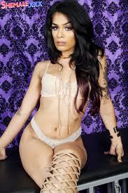 Shemale Xxx Transsexual Pornstars Blog Shemale Porn Royalty Beige Beauty With Transsexual Pornstar Aubrey On Shemale XXX