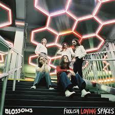 REVIEW: <b>Blossoms</b>' <b>Foolish Loving</b> Spaces – Picky Bastards