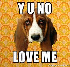 y u no love me - SAD DOG | Meme Generator via Relatably.com