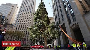 Rockefeller Center's famous <b>Christmas tree</b> 'on brand for 2020 ...