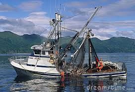 Image result for salmon fishing pics