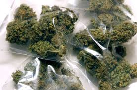 this is why weed should be legal everywhere zenpype one of the biggest and most widesp arguments from marijuana detractors is that smoking marijuana will lead to using other drugs