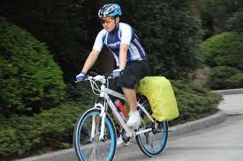 ROSWHEEL <b>60L Cycling Bicycle</b> Bag <b>Bike</b> Double Side Rear Rack ...