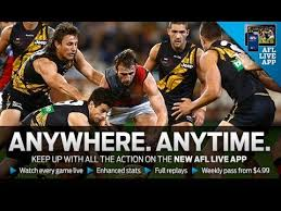 Image result for afl game pass