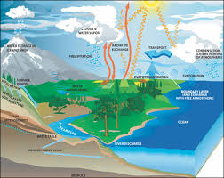nasa earth science  water cycle   precipitation educationdiagram of the water cycle