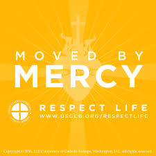 moved by mercy is theme of respect life month yearlong moved by mercy is theme of respect life month yearlong observance the catholic sun
