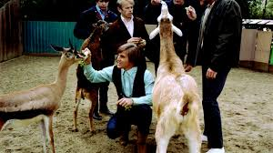 The epic tale of the <b>Beach Boys</b> and the '<b>Pet</b> Sounds' goats | KCRW