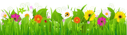 Image result for clip art flowers