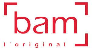 Bildresultat för BAM Case logo