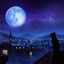 Full <b>Moon Cat</b> Dynamic Theme PS4 | История цен | PS Store (US ...