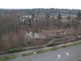 expedia bellevue building 1 2 parking lot looking south pond near expedia corporate offices pond near expedia