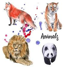 Animal Wild Set. Tiger, A <b>Lion</b>, A Panda, A <b>Fox</b>. Isolated On White ...