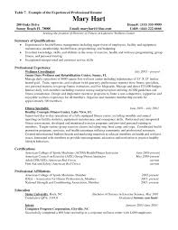 resume writing for senior level professionals sample customer resume writing for senior level professionals professional resume service 1 resume writing company resume examples sample